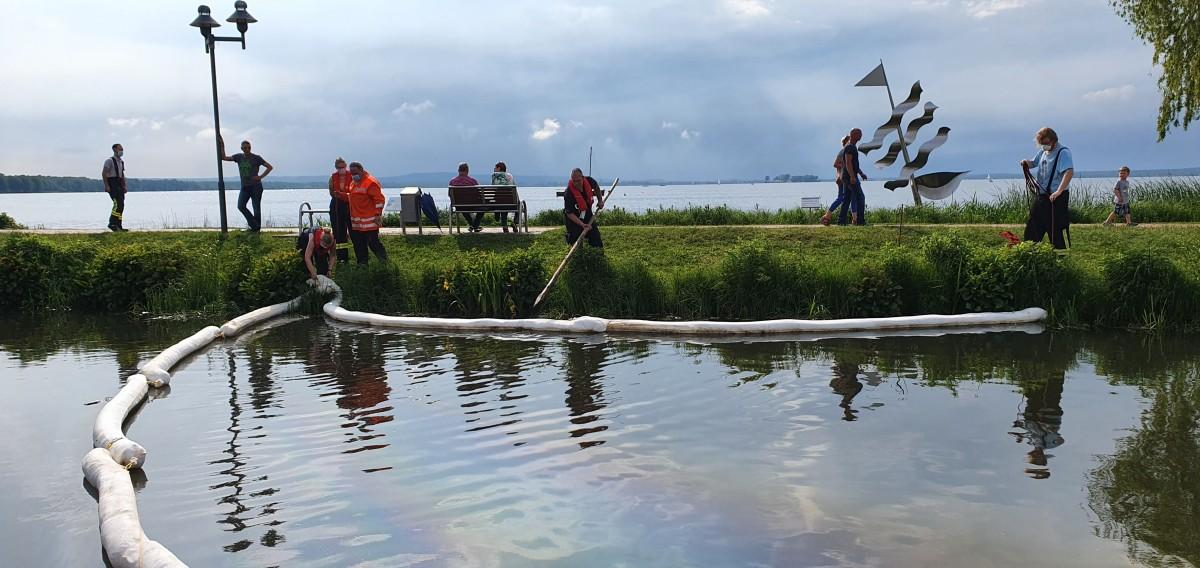 Steinhuder Meer: starke Ölverschmutzung in den Grachten