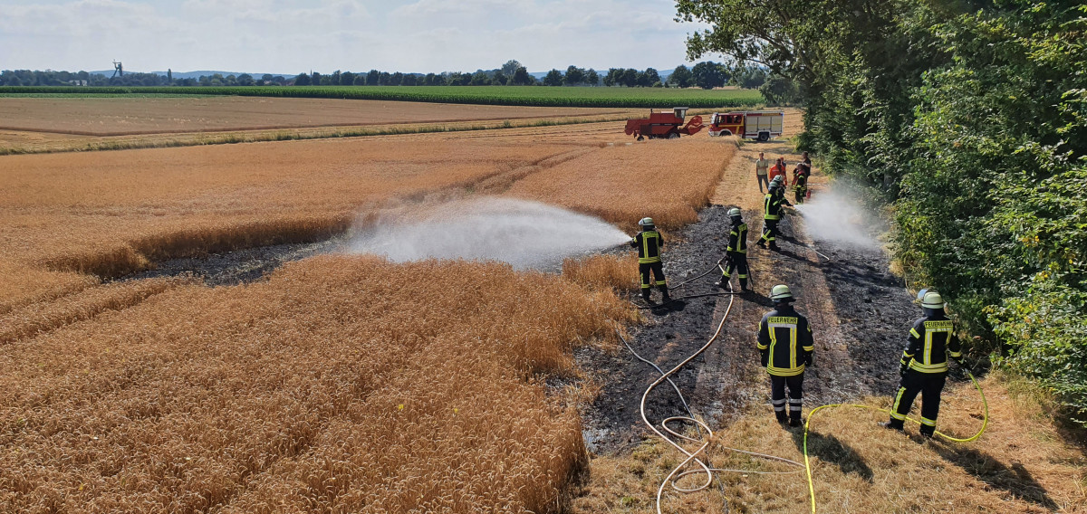 Zum Pageskampe: Flächenbrand auf Feldweg und Getreidefeld